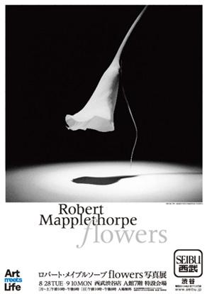「ロバート・メイプルソープflowers 写真」展 / 渋谷西武